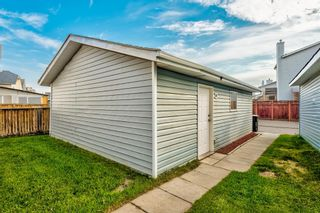Photo 40: 18 Erin Meadow Close SE in Calgary: Erin Woods Detached for sale : MLS®# A1143099