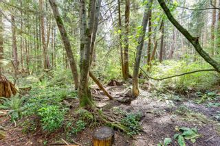 Photo 39: 1011 HENDECOURT Road in North Vancouver: Lynn Valley House for sale : MLS®# R2617338