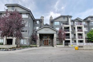 Main Photo: 415 35 Richard Court SW in Calgary: Lincoln Park Apartment for sale : MLS®# A1138648