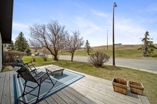 Photo 35: 224 Norseman Road NW in Calgary: North Haven Upper Detached for sale : MLS®# A1107239
