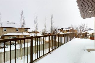Photo 45: 1254 ADAMSON Drive in Edmonton: Zone 55 House for sale : MLS®# E4226960