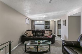 Photo 28: 9737 Elbow Drive SW in Calgary: Haysboro Detached for sale : MLS®# A1088703