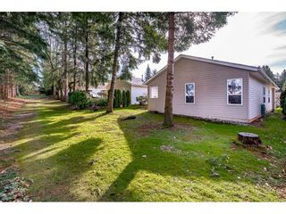 """Photo 35: 144 9080 198 Street in Langley: Walnut Grove Manufactured Home for sale in """"Forest Green Estates"""" : MLS®# R2547328"""