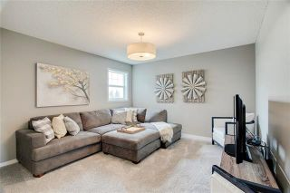 Photo 24: 393 MASTERS Avenue SE in Calgary: Mahogany Detached for sale : MLS®# C4302572