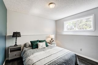 Photo 18: 20 Pineland Bay NE in Calgary: Pineridge Detached for sale : MLS®# A1108452