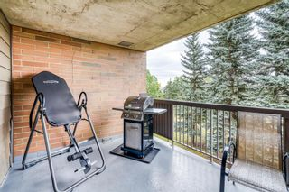 Photo 17: 307 30 McHugh Court NE in Calgary: Mayland Heights Apartment for sale : MLS®# A1138265