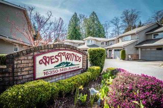 """Photo 1: 116 16350 14 Avenue in Surrey: King George Corridor Townhouse for sale in """"Westwinds"""" (South Surrey White Rock)  : MLS®# R2560885"""