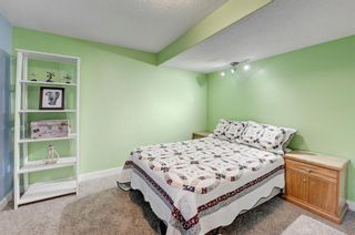 Photo 28: 3203 12 Avenue SE in Calgary: Albert Park/Radisson Heights Detached for sale : MLS®# A1139015