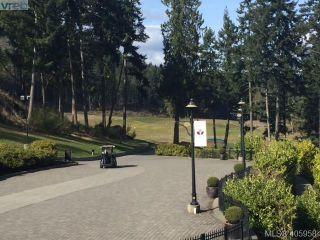 Photo 14: 206/208 1376 Lynburne Pl in VICTORIA: La Bear Mountain Condo for sale (Langford)  : MLS®# 806737
