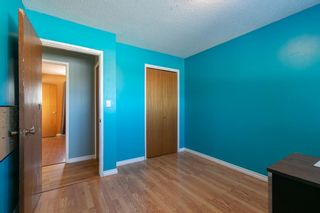 Photo 16: 1129 Downie Street: Carstairs Detached for sale : MLS®# A1072211
