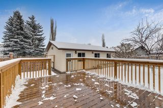 Photo 34: 28 Mckerrell Crescent SE in Calgary: McKenzie Lake Detached for sale : MLS®# A1049052