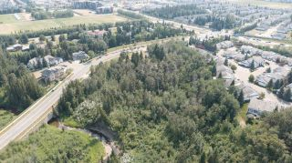 Photo 13: 40 BLACKBURN Drive W in Edmonton: Zone 55 House for sale : MLS®# E4266018