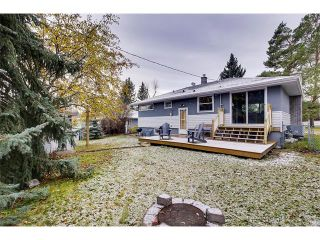 Photo 21: 4032 GROVE HILL Road SW in Calgary: Glendale House for sale : MLS®# C4088063