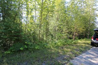 Photo 9: Lot 90 Birch Close: Land Only for sale : MLS®# 10071170