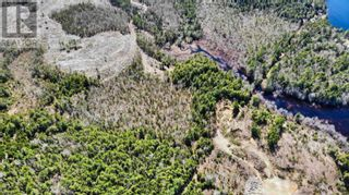 Photo 7: acreage 930 Road in Buckfield: Vacant Land for sale : MLS®# 202108244