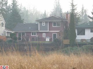 "Photo 10: 19685 51ST AV in Langley: Langley City House for sale in ""EAGLE HEIGHTS"" : MLS®# F1129130"