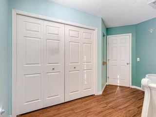 Photo 28: 100 Cimarron Grove Way: Okotoks Detached for sale : MLS®# A1068596