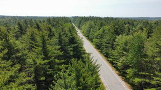 Photo 8: Lot Highway 203 in Shelburne: 407-Shelburne County Vacant Land for sale (South Shore)  : MLS®# 202114248