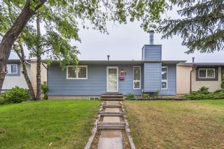Photo 14: 875 PINECLIFF DR NE in Calgary: Pineridge House for sale : MLS®# C4123364