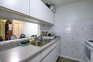 Photo 15: 110 11 DOVER Point SE in Calgary: Dover Apartment for sale : MLS®# A1118273