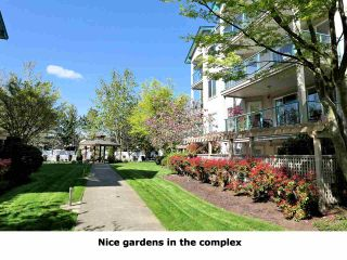 """Photo 20: 102 20443 53RD Street in Langley: Langley City Condo for sale in """"Countryside Estates"""" : MLS®# R2362376"""