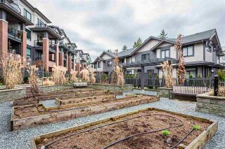 """Photo 20: 4 2988 151 Street in Surrey: Sunnyside Park Surrey Townhouse for sale in """"SouthPoint Walk"""" (South Surrey White Rock)  : MLS®# R2425343"""