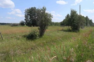 Photo 9: Twp 510 RR 33: Rural Leduc County Rural Land/Vacant Lot for sale : MLS®# E4256128