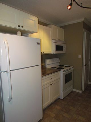 Photo 4: 32297 Diamond Avenue in Mission: House for rent