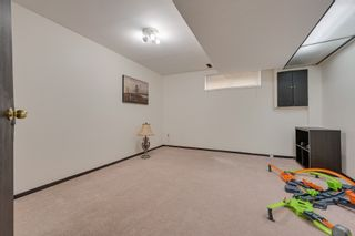 Photo 54: 712 Hendra Crescent: Edmonton House for sale : MLS®# E4229913