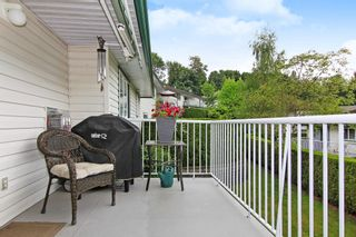 Photo 18: 58 34250 HAZELWOOD Avenue in Abbotsford: Abbotsford East Townhouse for sale : MLS®# R2378409