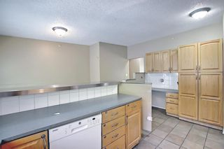 Photo 11: 91 Chancellor Way NW in Calgary: Cambrian Heights Detached for sale : MLS®# A1119930