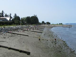 """Photo 21: 2826 MCBRIDE Avenue in Surrey: Crescent Bch Ocean Pk. House for sale in """"Crescent Beach"""" (South Surrey White Rock)  : MLS®# F1404362"""