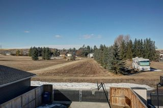 Photo 30: 238 Williamstown Close NW: Airdrie Detached for sale : MLS®# A1082360