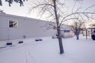 Photo 24: 301 Burroughs Circle NE in Calgary: Monterey Park Mobile for sale : MLS®# A1070742