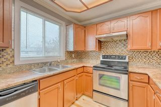 Photo 26: 355 Whitman Place NE in Calgary: Whitehorn Detached for sale : MLS®# A1046651