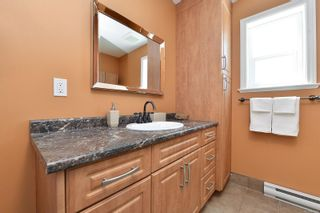 Photo 20: 914 DUNN Ave in : SE Swan Lake House for sale (Saanich East)  : MLS®# 876045