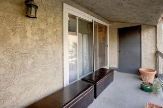 Photo 25: 6 313 13 Avenue SW in Calgary: Beltline Apartment for sale : MLS®# A1141829