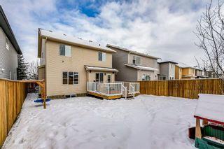 Photo 39: 69 SILVERADO Boulevard SW in Calgary: Silverado Detached for sale : MLS®# A1072031