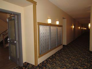 Photo 31: 329 10121 80 Avenue in Edmonton: Zone 17 Condo for sale : MLS®# E4255025