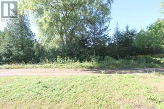 Photo 8: LT 3 SHORE RD in Brock: Vacant Land for sale : MLS®# N5357476