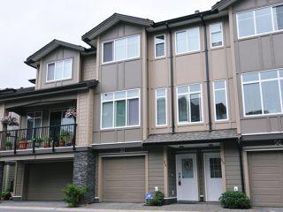 Photo 1: # 52 22865 TELOSKY AV in Maple Ridge: East Central Condo for sale : MLS®# V1013638