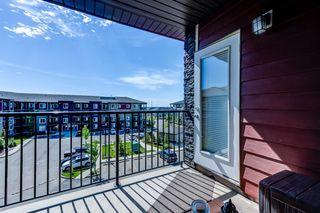 Photo 24: 406 3211 JAMES MOWATT Trail in Edmonton: Zone 55 Condo for sale : MLS®# E4248053