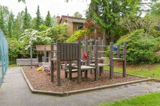 """Photo 16: 1846 PURCELL Way in North Vancouver: Lynnmour Townhouse for sale in """"Purcell Woods"""" : MLS®# R2266155"""
