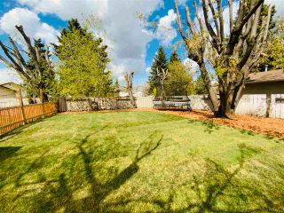 Photo 5: 162 Maple Crescent: Wetaskiwin House for sale : MLS®# E4241347