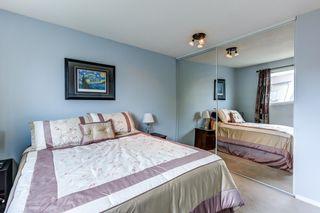 Photo 20: 3613 44 Avenue in Edmonton: Zone 29 House for sale : MLS®# E4246393