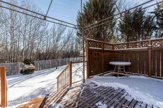 Photo 36: 41 Deer Park Way: Spruce Grove House for sale : MLS®# E4229327
