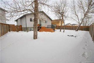 Photo 19: 26 Francois Muller Place in Winnipeg: Windsor Park Residential for sale (2G)  : MLS®# 1803008