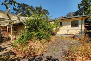 Photo 15: 2501 Wootton Cres in : OB Henderson House for sale (Oak Bay)  : MLS®# 882691