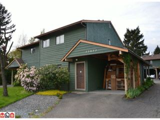 Photo 9: 4 33853 MARSHALL Road in ABBOTSFORD: Central Abbotsford Townhouse for rent (Abbotsford)