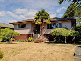 Photo 1: 738 Cameo St in VICTORIA: SE High Quadra House for sale (Saanich East)  : MLS®# 798445